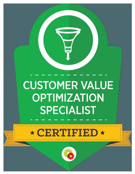 Cutomer Value Optimization Specialist